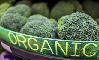Organicbroccoli_lead