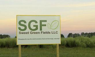 Sweetgreenfields_lead
