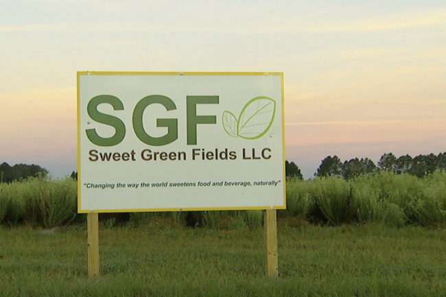 Sweet Green Fields stevia sign