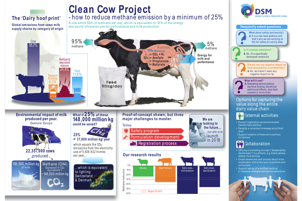 DSM Clean Cow project infographic
