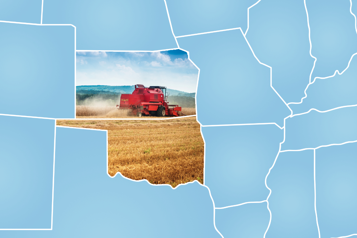 Kansas and Oklahoma wheat harvest