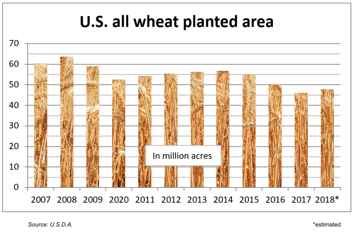 U.S. all wheat planted area chart