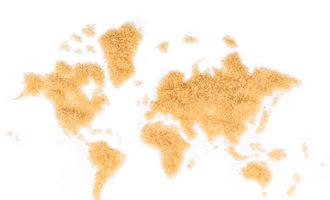 Sugarmap_lead