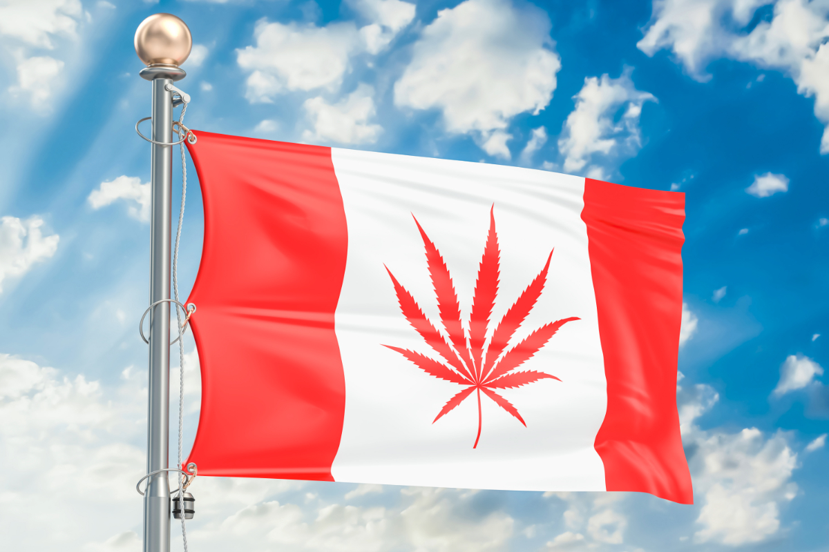 Canadian legalization of cannabis may provide roadmap for the future