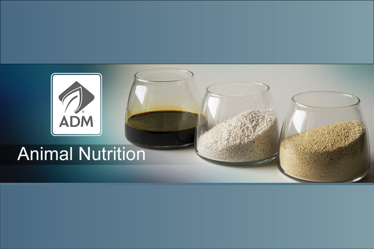 ADM logo with ingredients in glasses