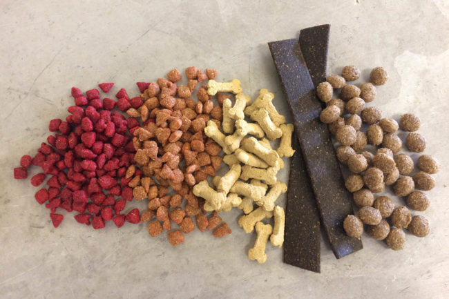 Extruded pet food displayed at Texas A&M University short course