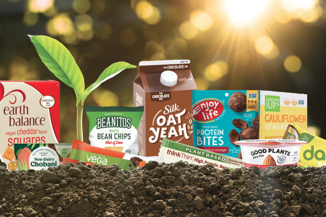 Plant protein products planted in the ground