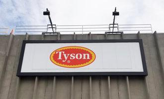 Tysonpascowaplant lead