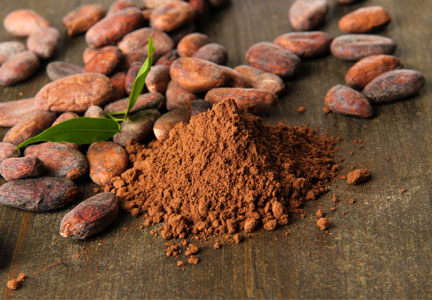 Europe approves Olams purchase of ADM cocoa business | Food Business