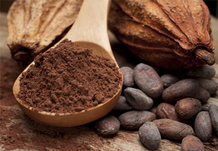 Sustainable cocoa