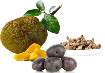 Adventurous foods - jackfruit, purple potatoes, insect protein