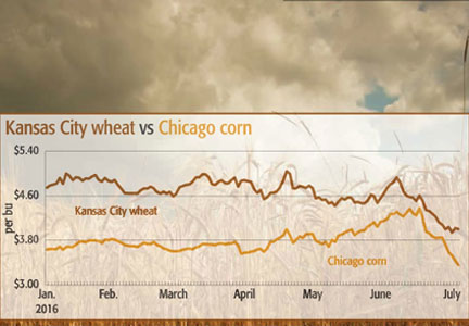 Grain markets see wide swings