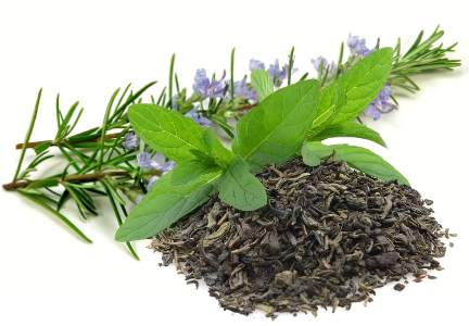 Green tea extract and rosemary extract