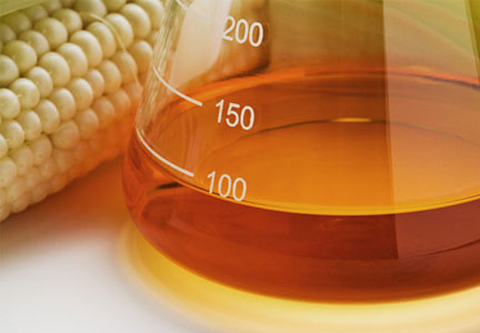 high fructose corn syrup research paper