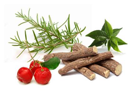 Natural preservatives - rosemary, acerola, green tea, licorice