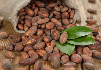 New York cocoa bean futures at eight-year lows | Food