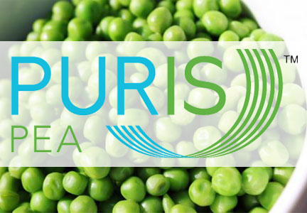 PurisPea, World Food Processing  Has No Objection