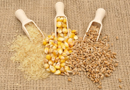 Rice, corn and wheat