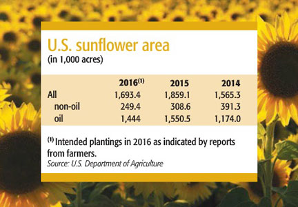 Sunflower area chart