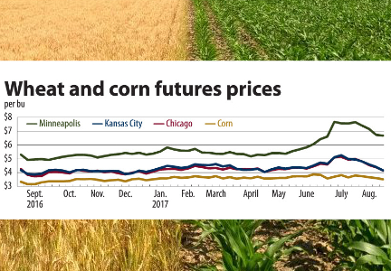 Wheat and corn futures prices chart