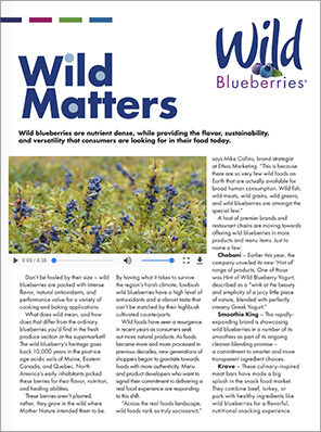 201806_Wild Blueberries_Wild Matters